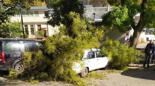 ForPost- СевСети #1344: Искалеченные машины, время на прическу и новая реальность Севастополя