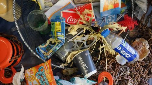 ForPost - Севастопольцы смогут избавиться от опасных отходов