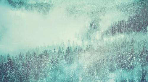 ForPost - В Крыму выпал первый снег. Видео-факт