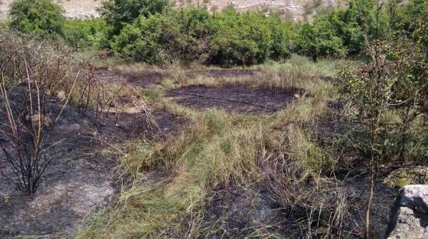 ForPost - Крупные пожары охватили балки Севастополя