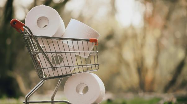 ForPost - Жителей Канады призвали запасаться туалетной бумагой