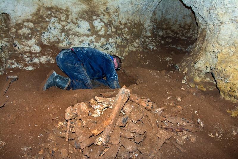 ForPost - Новости : Строительство «Тавриды» приостановлено из–за пещеры