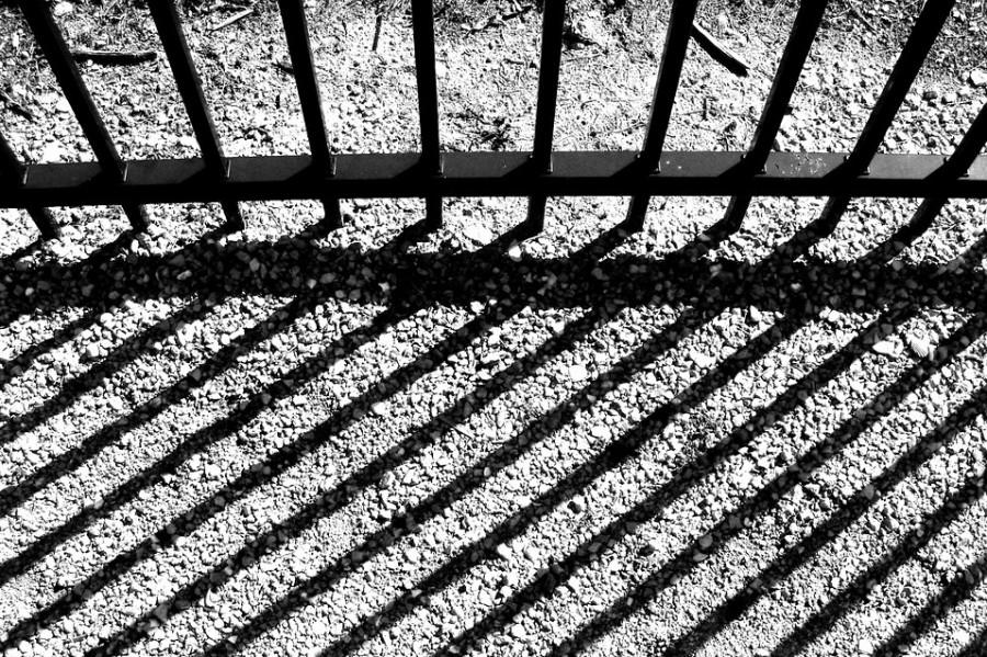 Аферы с севастопольской землей закончились для председателя дачных кооперативов тюрьмой