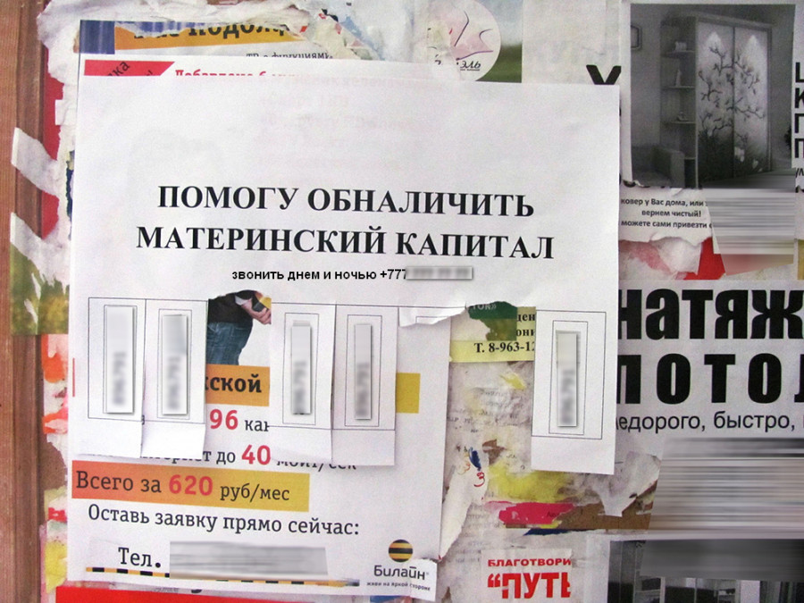 В Севастополе незаконно предлагают землю под Челябинском за маткапитал