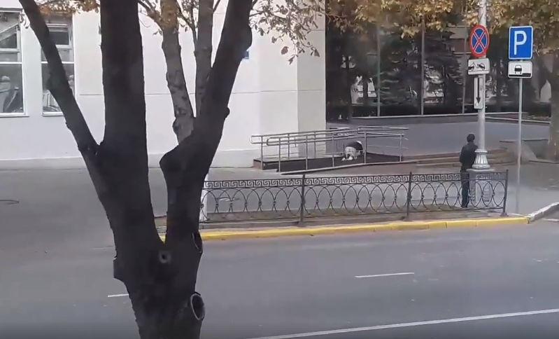 Старушка на коленях приползла в правительство Севастополя — видео