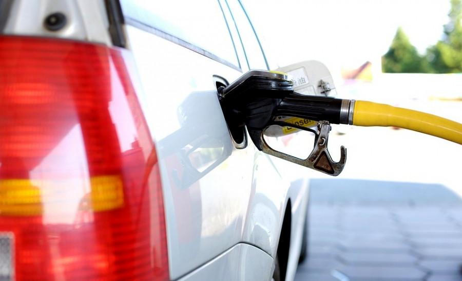 Сколько будет стоить бензин в Севастополе