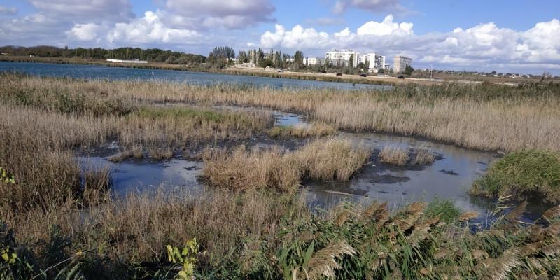 Целебные озёра Крыма пополняют канализацией