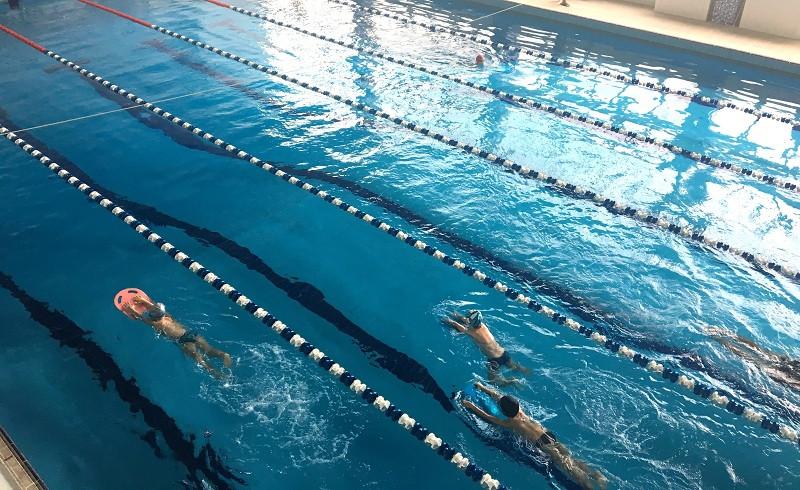 Воду в бассейне «мутят» паршивые овцы, – руководство детской спортшколы