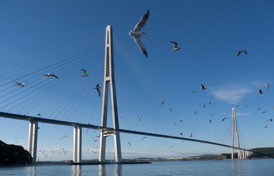 ForPost - Новости : Мост через Севастопольскую бухту будет висячим