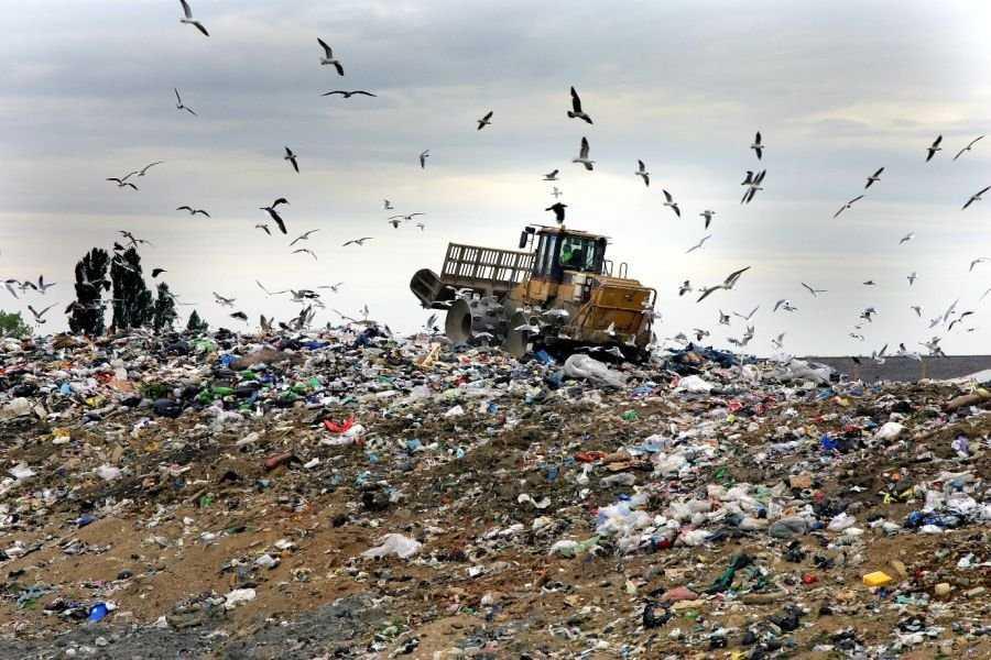 ForPost - Новости : В Севастополе обещают построить мусороперерабатывающий завод в виде эко-парка