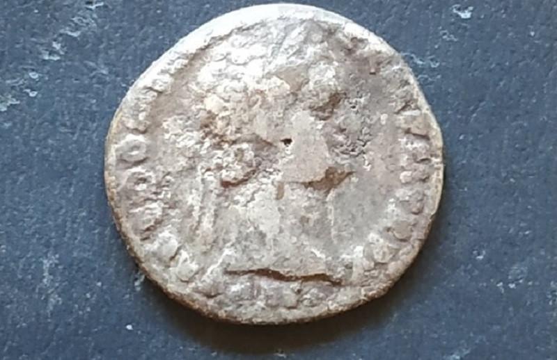 Археологи нашли серебряный денарий иперстень ссердоликом вантичном некрополе вКрыму
