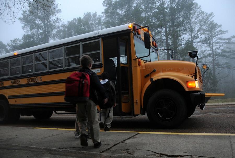ForPost - Новости : Бесплатный проезд школьникам Севастополя: пустые мечты или ближайшее будущее?