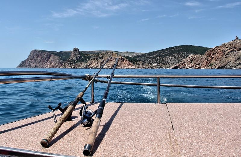 ForPost - Новости : В Крыму запретили ловить рыбу зимой