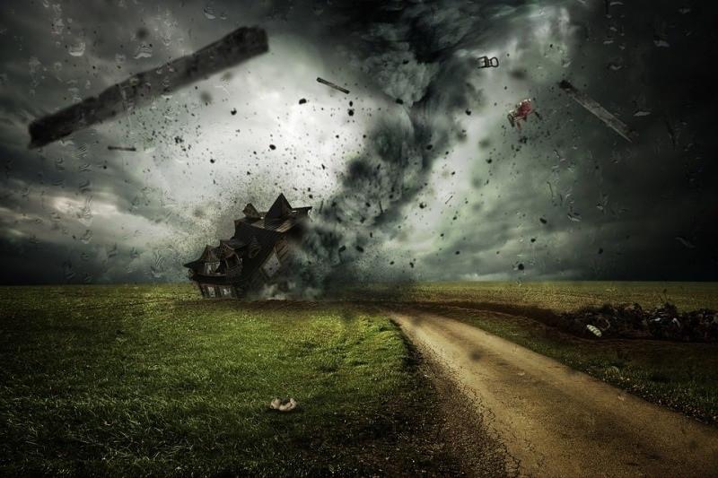 ForPost - Новости : Крым штормит: сильный ветер принес холода и пару упавших деревьев