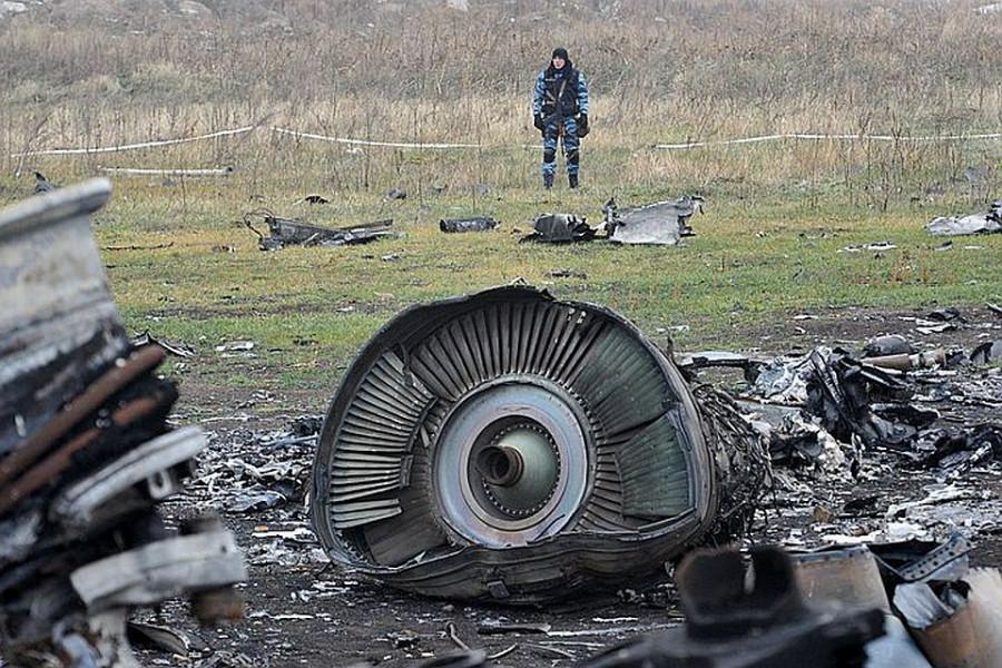 ForPost - Новости : Дело о крушении MH17 частично передали в гаагский суд