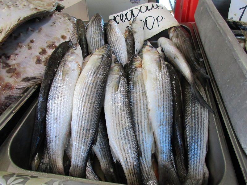 ForPost - Новости : В Севастополе хотят создать рыбный рынок