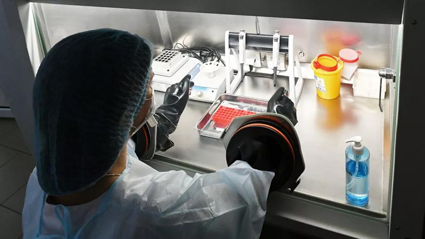 ForPost - Новости : В Китае назвали сроки окончания эпидемии коронавируса