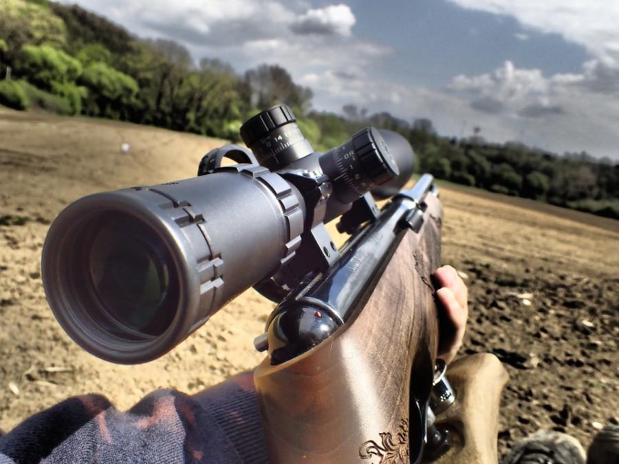 ForPost - Новости : Как Севастополь реагирует на рост продаж патронов к оружию в России