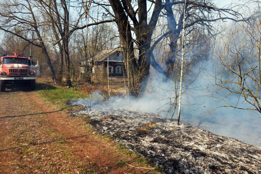 ForPost - Новости : Пожар в зоне отчуждения Чернобыля приближается к границе Беларуси