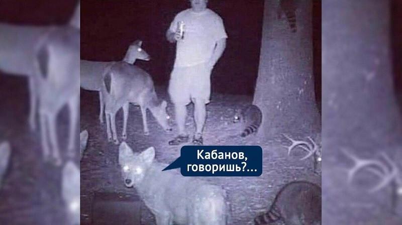 ForPost - Новости : Сбежавший с самоизоляции в лес крымский вице-премьер посыпал голову пеплом