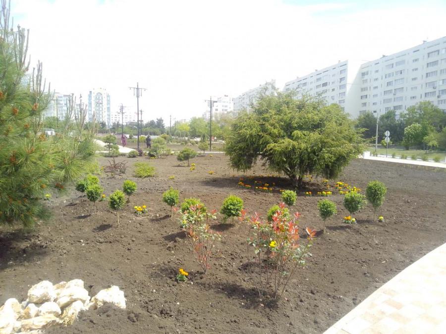 ForPost - Новости : Новый сквер в Севастополе назвали в честь банковских платежей