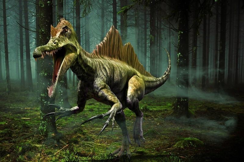 ForPost - Новости : Ученые выяснили, как именно погибли динозавры
