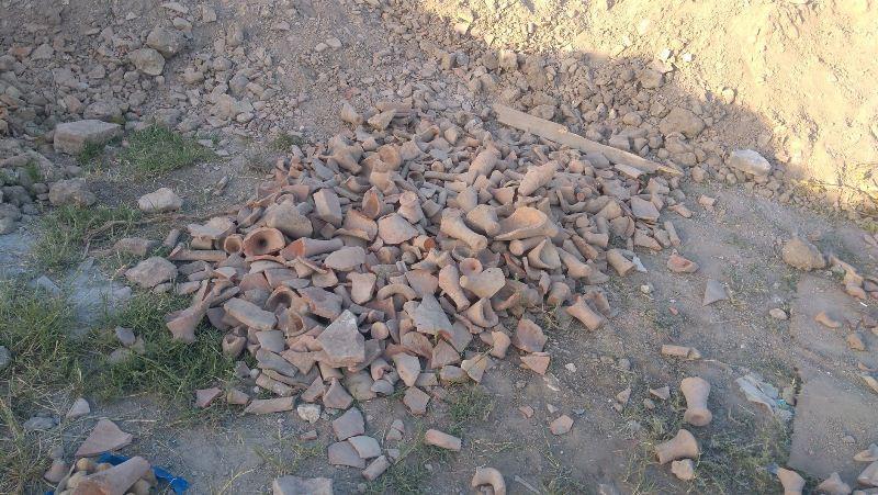 ForPost - Новости : В Керчи неизвестные устроили свалку из артефактов и костей