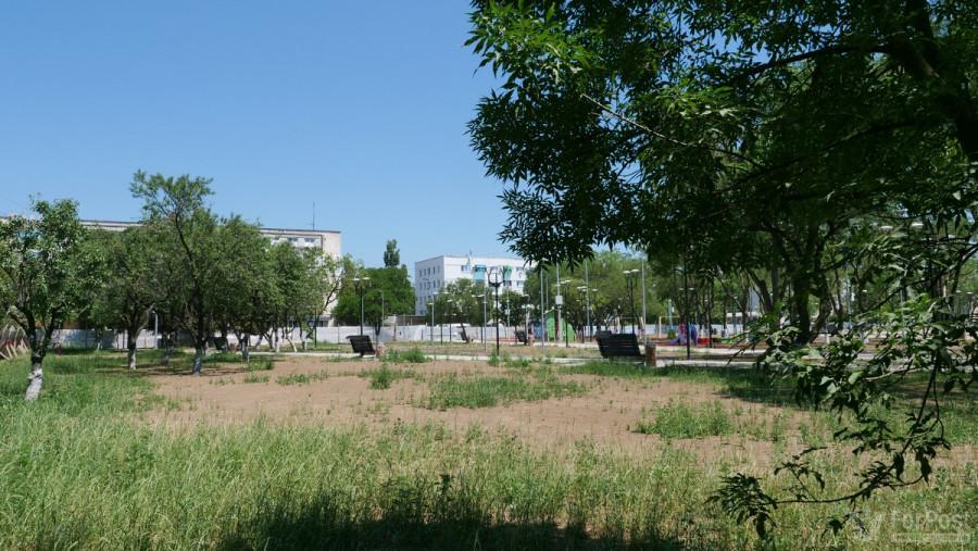 ForPost - Новости : В Севастополе готовят к открытию лысый парк