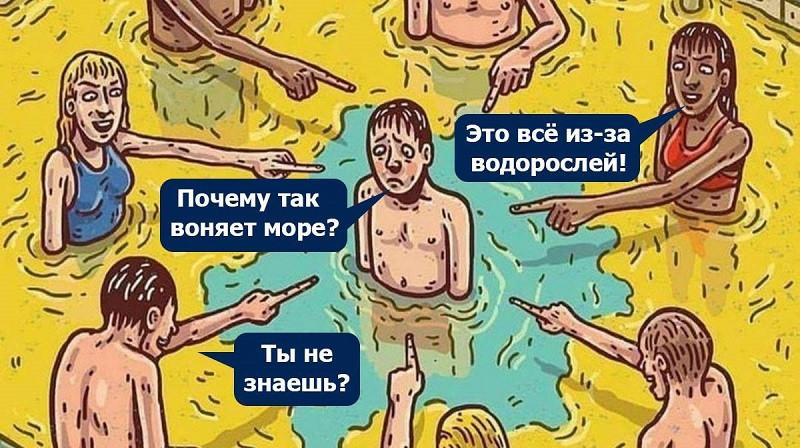 ForPost - Новости : В зловонии над крымским побережьем виновата аномальная жара