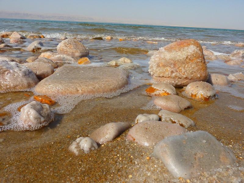 ForPost - Новости : Черное море просолилось еще больше