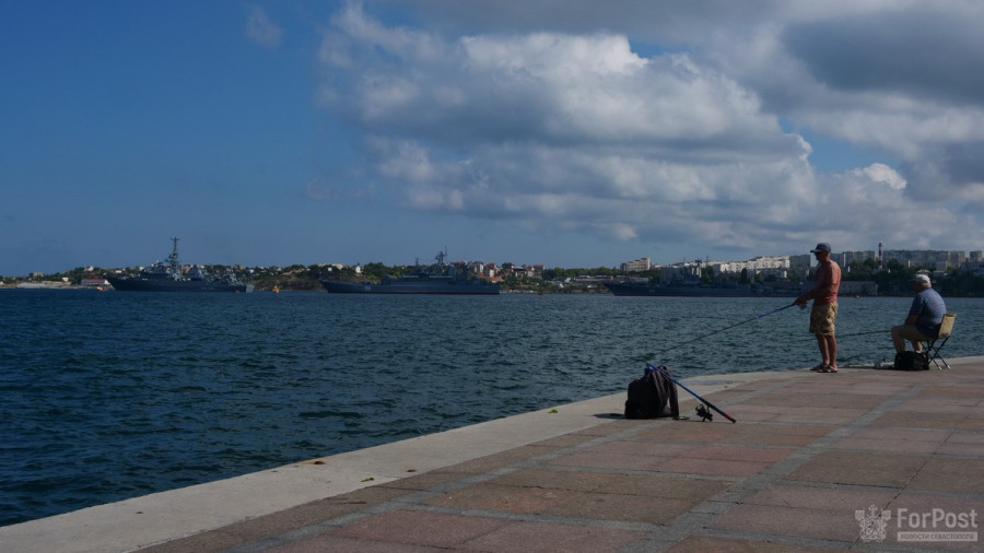 ForPost - Новости : В Севастопольской бухте выстраиваются корабли Черноморского флота
