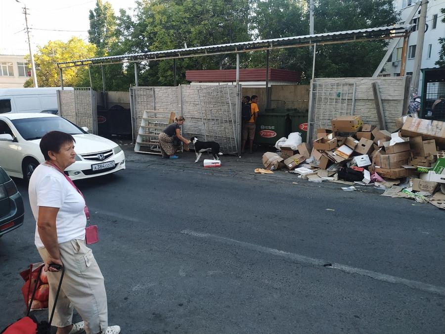 ForPost - Новости : Севастопольский рынок утопает в мусорной свалке