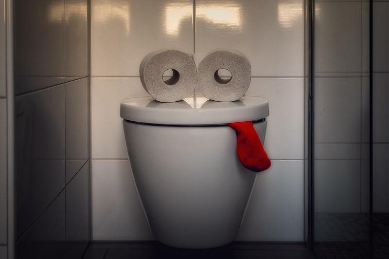 ForPost - Новости : Из общественного туалета в Крыму на посетительницу вылетело «нечто»