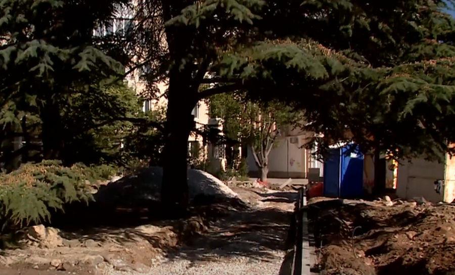 ForPost - Новости : Почти 100 деревьев пойдут под снос из-за реконструкции улицы в Севастополе