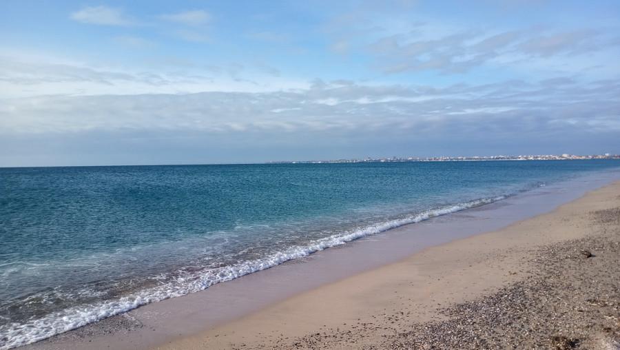 ForPost - Новости : В море у берегов Севастополя обнаружены десятки загрязнений воды