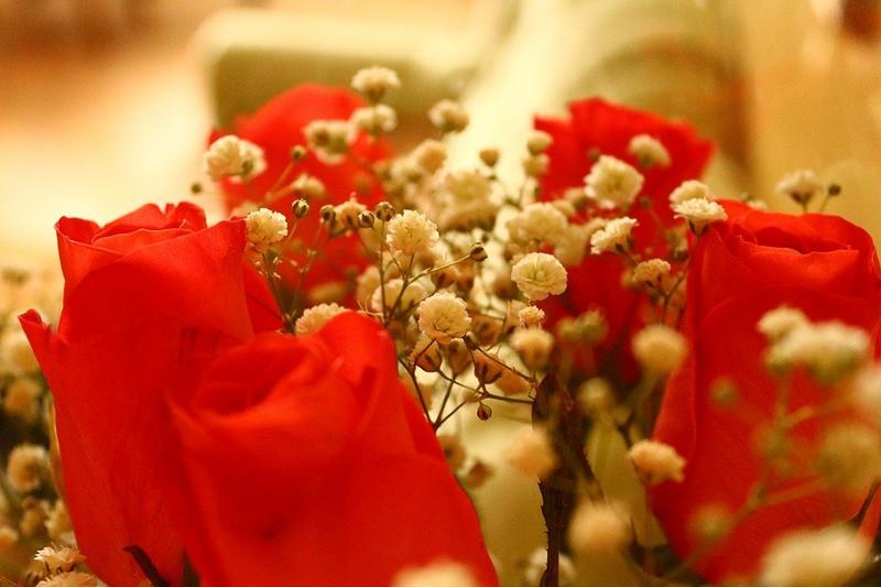 ForPost - Новости : Подростки из Крыма ограбили киоск ради двух букетов алых роз