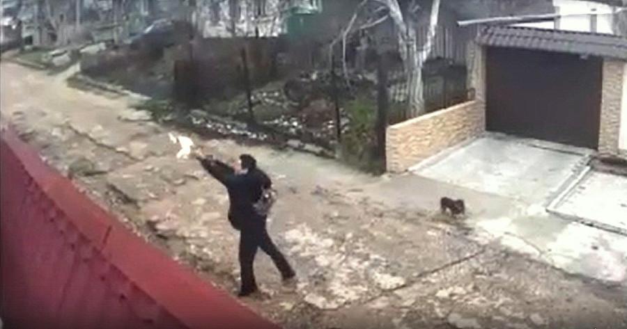 ForPost - Новости : Избавляющийся от кота севастополец попал в камеру наблюдения