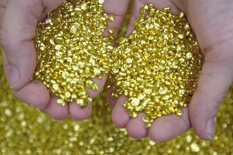 ForPost - Новости : У депутата Госдумы конфисковали семь тонн золота
