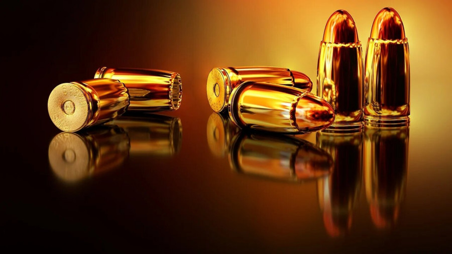 ForPost - Новости : Торговля оружием остановится в Москве из-за незаконных протестных акций