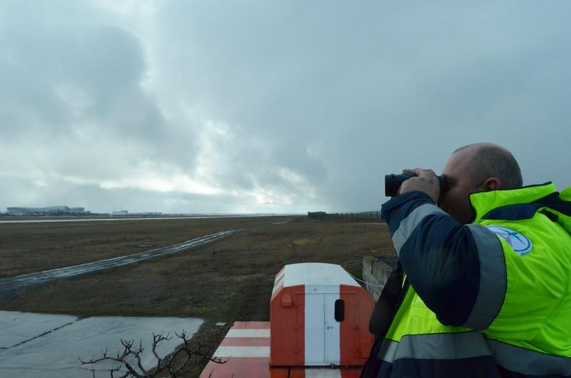 ForPost - Новости : Как главный аэропорт Крыма борется с птицами