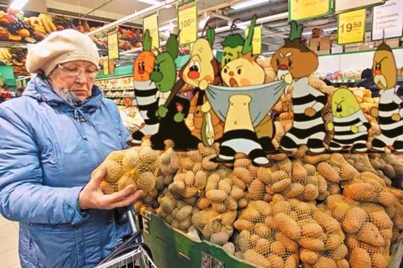 ForPost - Новости : Россиян решили накормить картофелем для скота