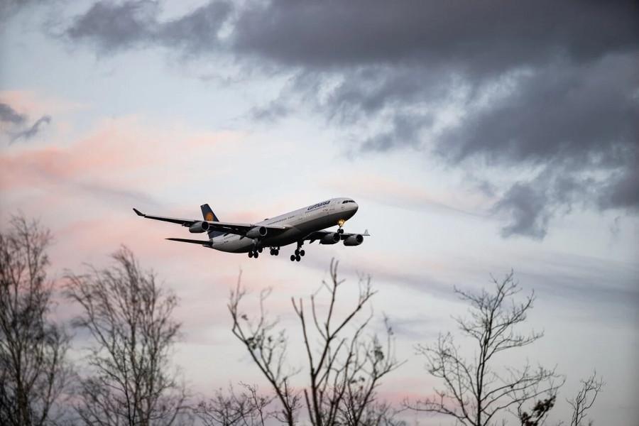 ForPost - Новости : Нидерланды не видят вины Украины в крушении MH17