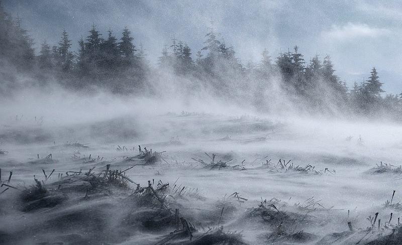 ForPost - Новости : Снегопады вернутся в Крым на исходе февраля