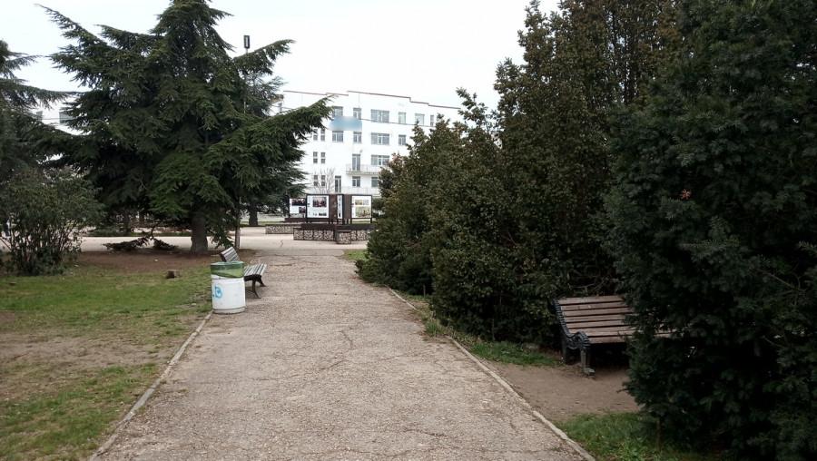 ForPost - Новости : Севастопольцы волнуются, что хиреет сквер «Каменный цветок» у «Муссона»