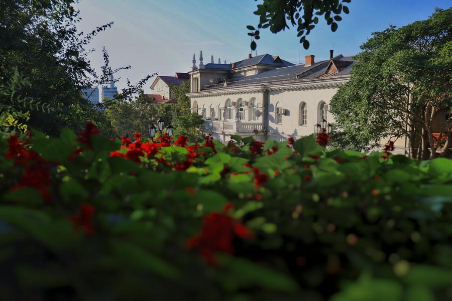 ForPost - Новости : Севастопольские школы и больницы озеленят почти на 7 миллионов