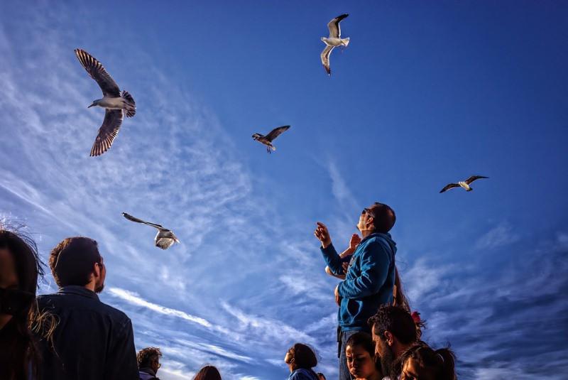 ForPost - Новости : Из-за коронавируса итальянцы собираются в Крым
