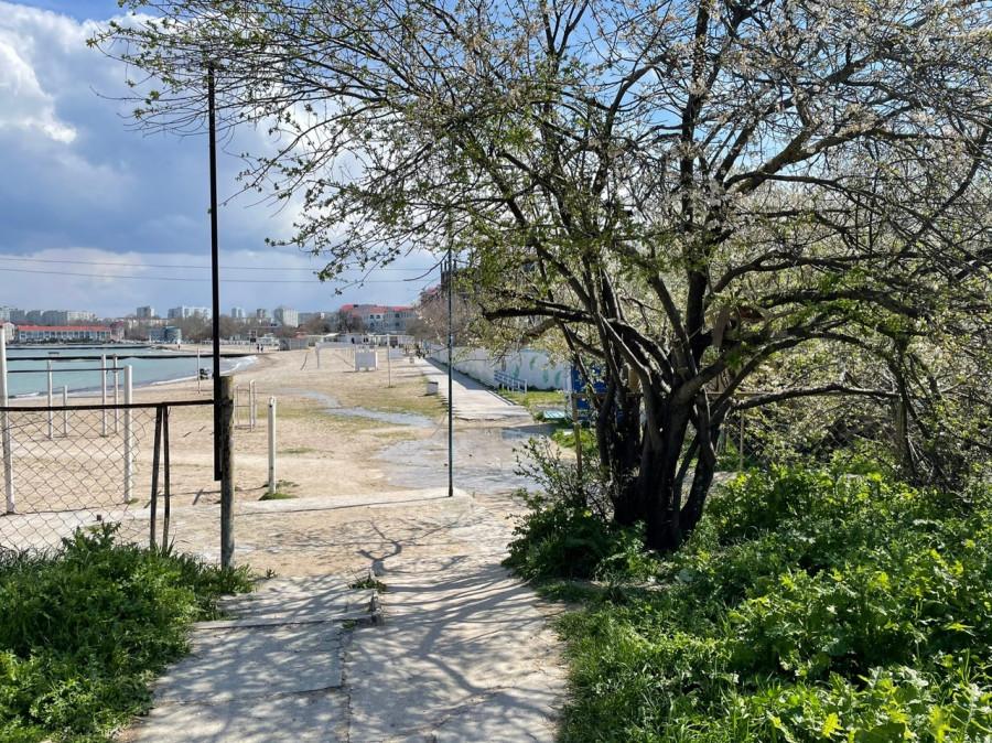 ForPost - Новости : СевСети #1214. Нападение средь бела дня и фекалии в море Севастополя