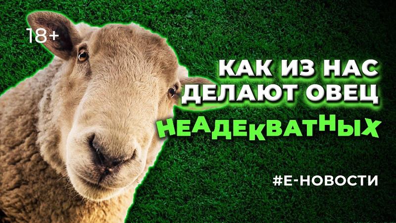 ForPost - Новости : Как из нас с детства делают безропотных овец