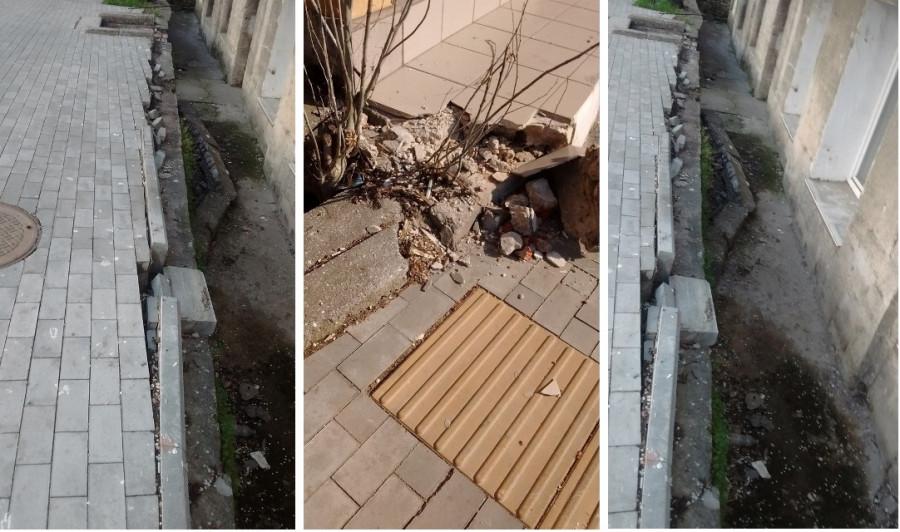 ForPost - Новости : В Севастополе разыскали ночных «железных дровосеков»