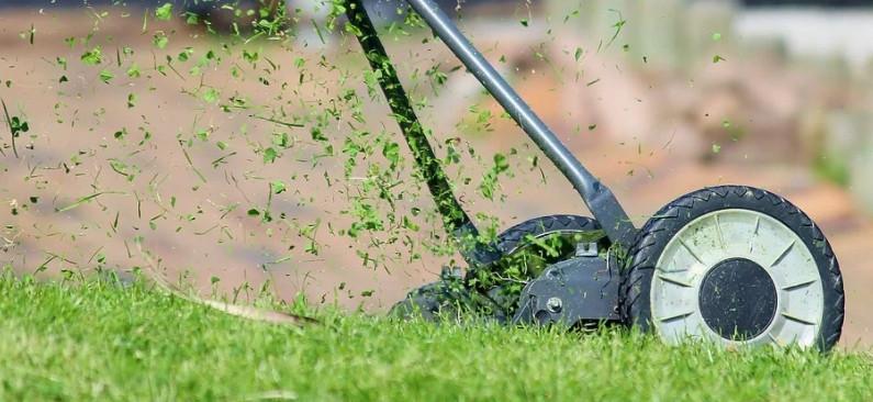 ForPost - Новости : Севастопольские чиновники и общественники косят траву